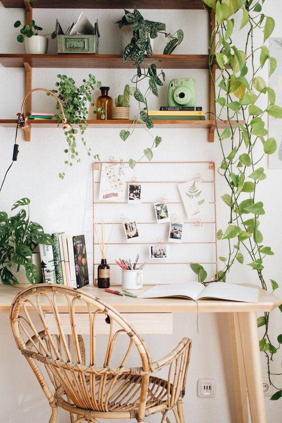 Plants above a desk to help with focus.
