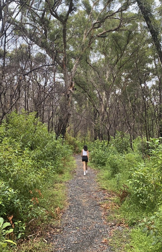 Woman walking down a bush path lined with trees